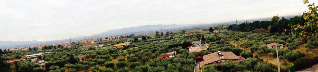 Una 'panoramica' di parte dei terreni dell'ex Pio istituto di Santo Spirito